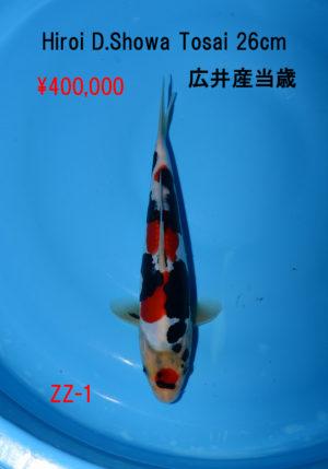 zz-1_400000yen_hiroi-d-showa-tosai-26cm_dsc_6108