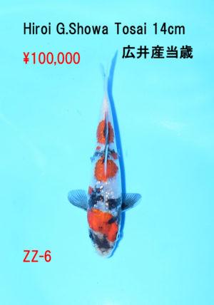 zz-6_100000yen_hiroi-g-showa-tosai-14cm_dsc_6079