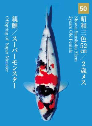 dainichikai2017_50