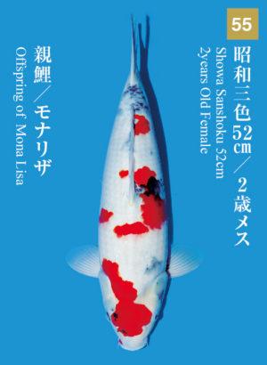 dainichikai2017_55