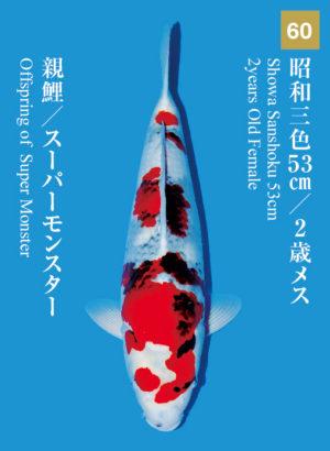 dainichikai2017_60
